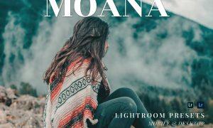 Moana Mobile and Desktop Lightroom Presets