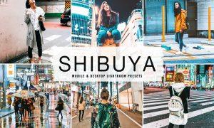 Shibuya Mobile & Desktop Lightroom Presets