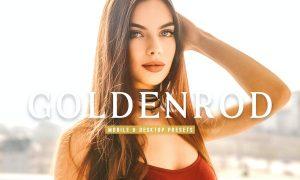 Goldenrod Mobile & Desktop Lightroom Presets
