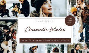 Lightroom Presets - Cinematic Winter
