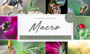 Lightroom Presets - Macro Vol. 1