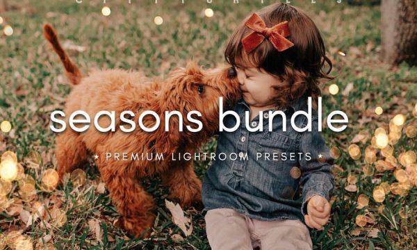 SEASONS BUNDLE Fall & Winter Lightroom Presets