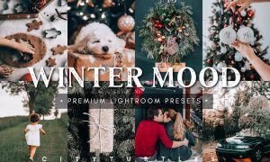 Winter Mood Holiday Lightroom Presets